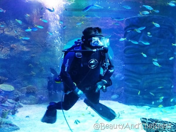 Sea Life Orlando diver Beauty and the Beets
