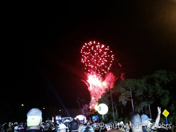 Star Wars Half Marathon fireworks Beauty and the Beets