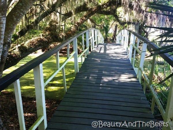 side bridges Magnolia Plantation Beauty and the Beets