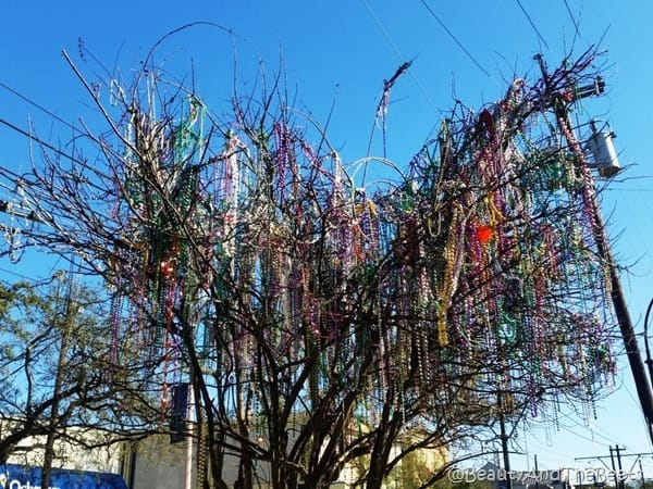 Beads beads beads RNR NOLA #Rocknblog Beauty and the Beets