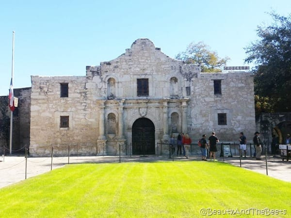 The Alamo Beauty and the Beets