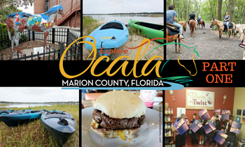 Ocala Marion County Beauty and the Beets part one (1)