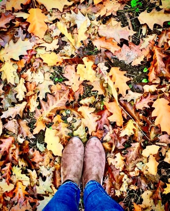 Blogtober leaves
