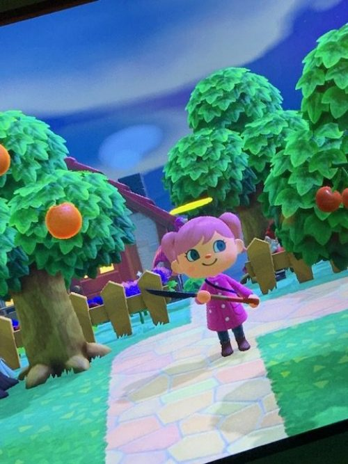 Animal Crossing Island Getaway Tag