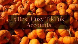 Cosy TikTok Accounts to Follow