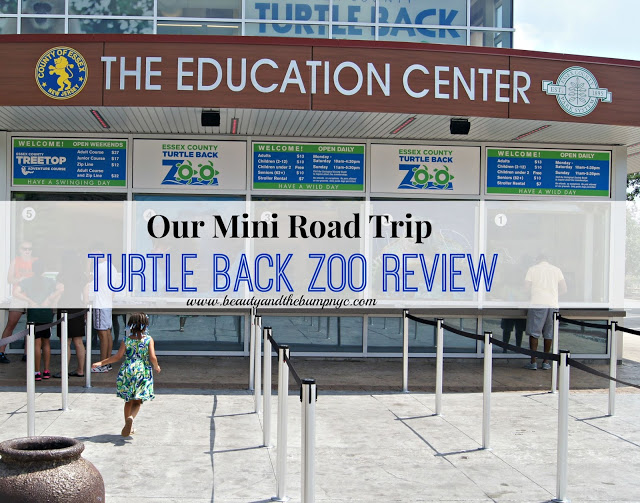 Our Mini Road Trip to the Turtle Back Zoo
