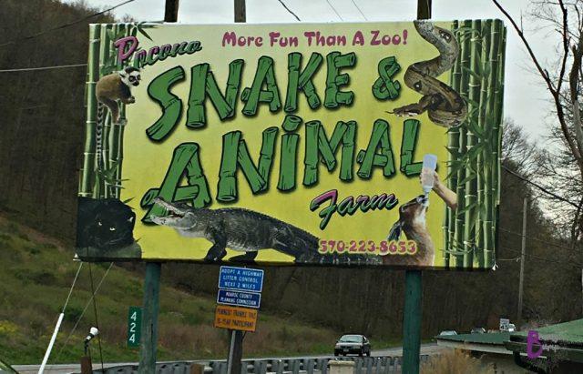 Pocono Snake and Animal Farm