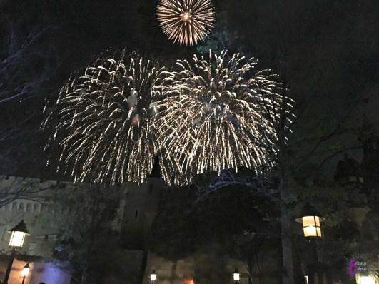 Disney's Magic Kingdom Fireworks