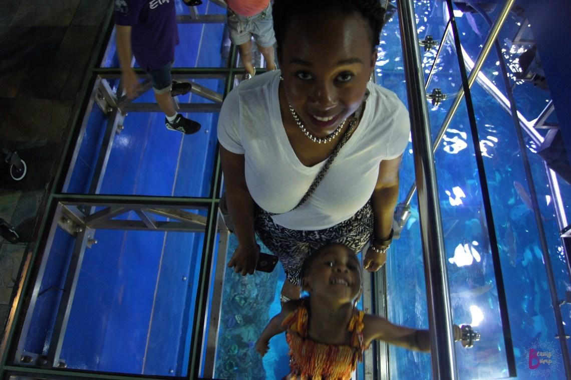 Top 5 Aquariums to Visit When Traveling - Dubai Aquarium