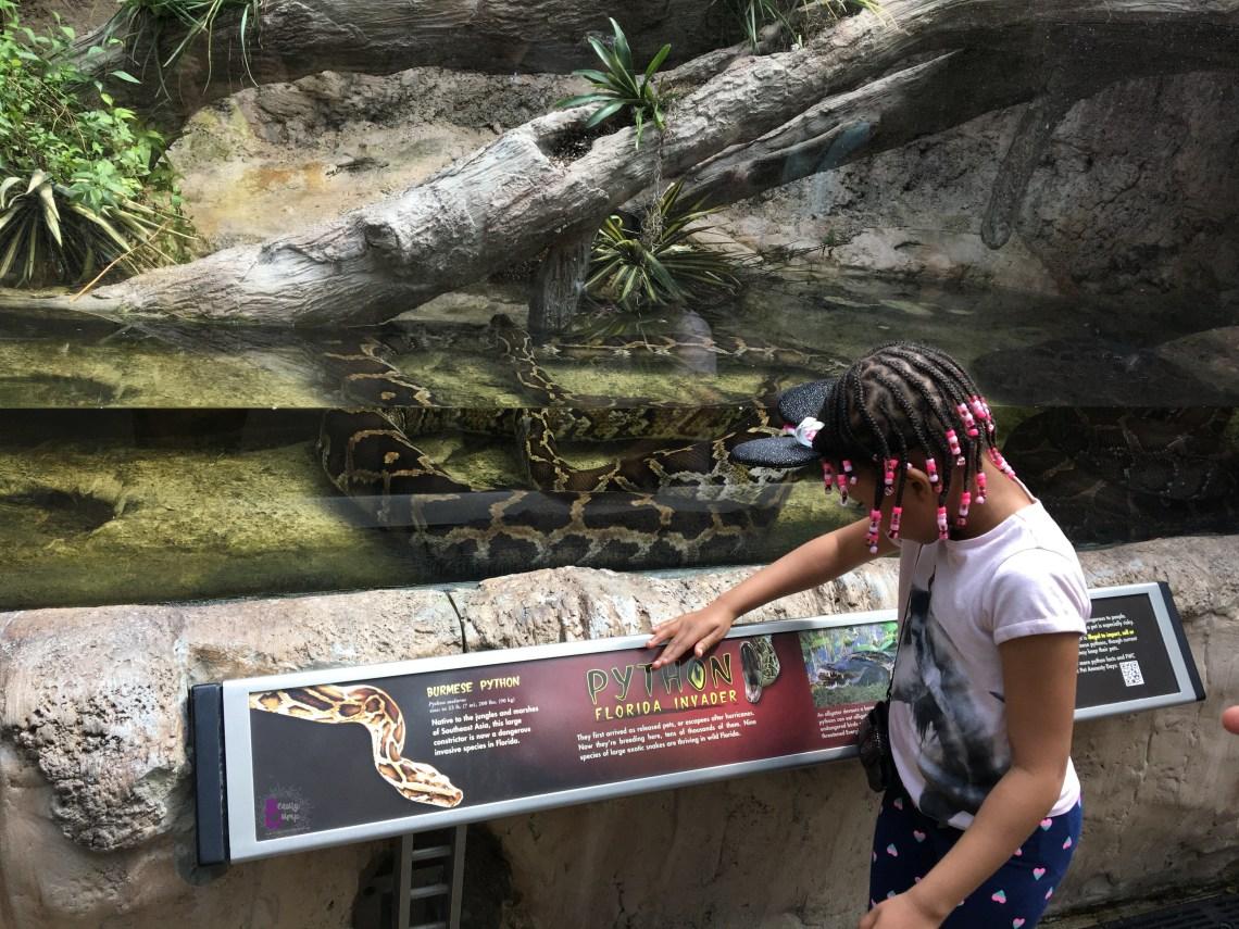Top 5 Aquariums to Visit When Traveling - Florida Aquarium