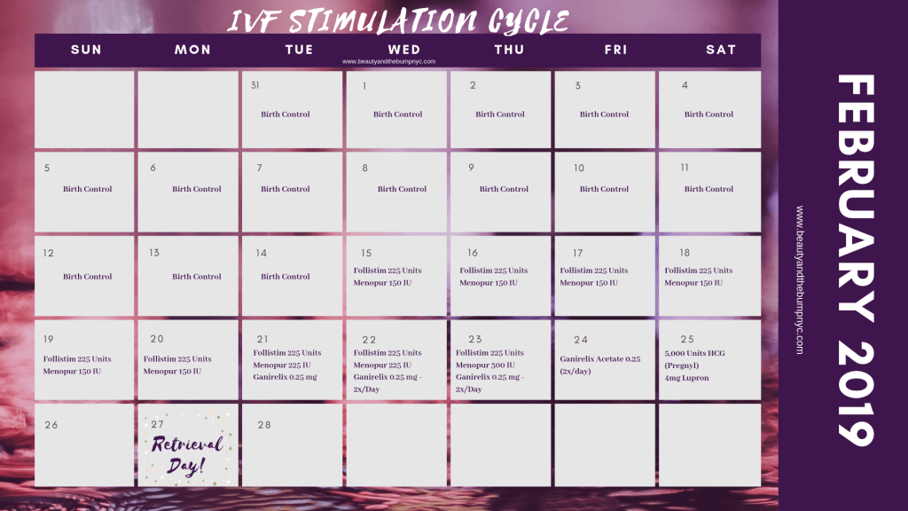 Sample IVF Cycle Calendar featuring medications