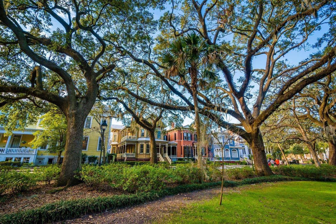 A green-space park in Savannah, GA.