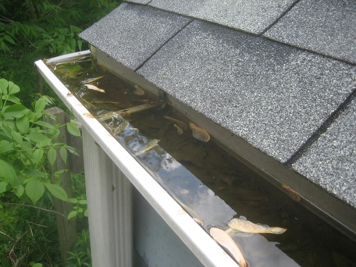 The Best Gutter Cleaning Tips for You to Try