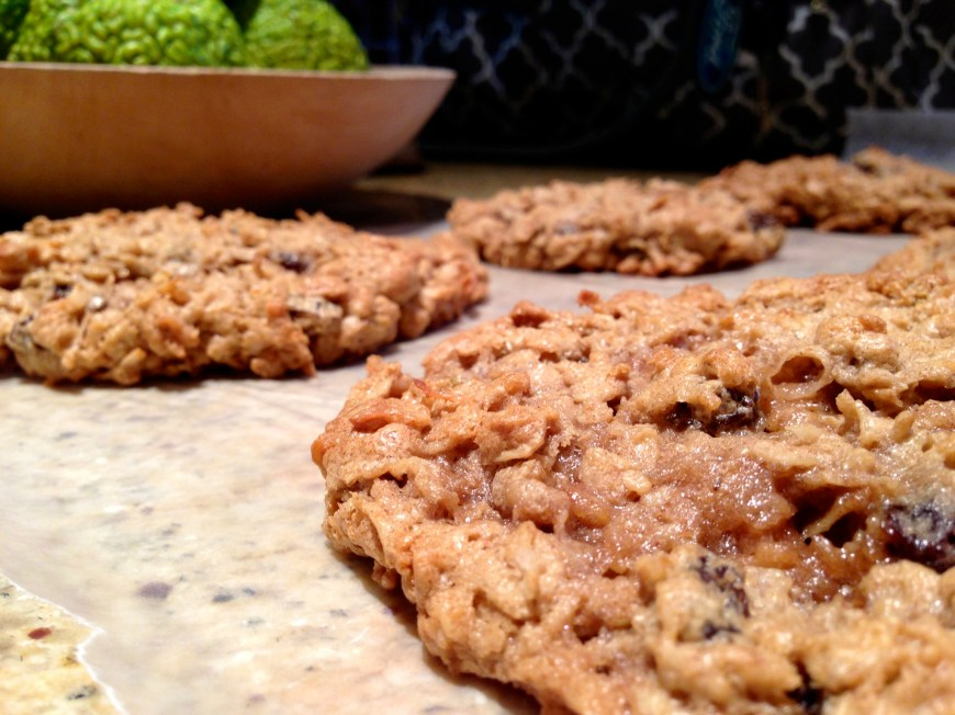 Monster Cookies by BeautyBeyondBones #dessert #glutenfree #cookies #edrecovery #food #yum
