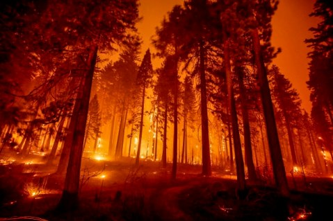 Lake Tahoe is being devastated by the Caldor Fires, covering the region in thick, gray smoke that stings your eyes and nostrils. This is what it's like to take a girls trip in the middle of the apocalypse. #prayfortahoe #cali #caldorfire #forestfires #california #laketahoe #summer #tahoe #girlstrip #firesafety