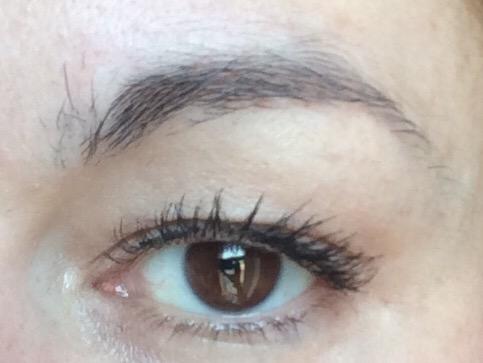 freedom-bulletproof-brow-pomade-long-lasting-brow-tutorial-before