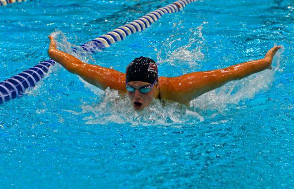 水泳 バタフライ レッスン