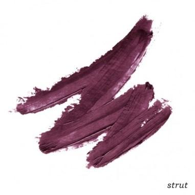 strut_swipe_shadename_4