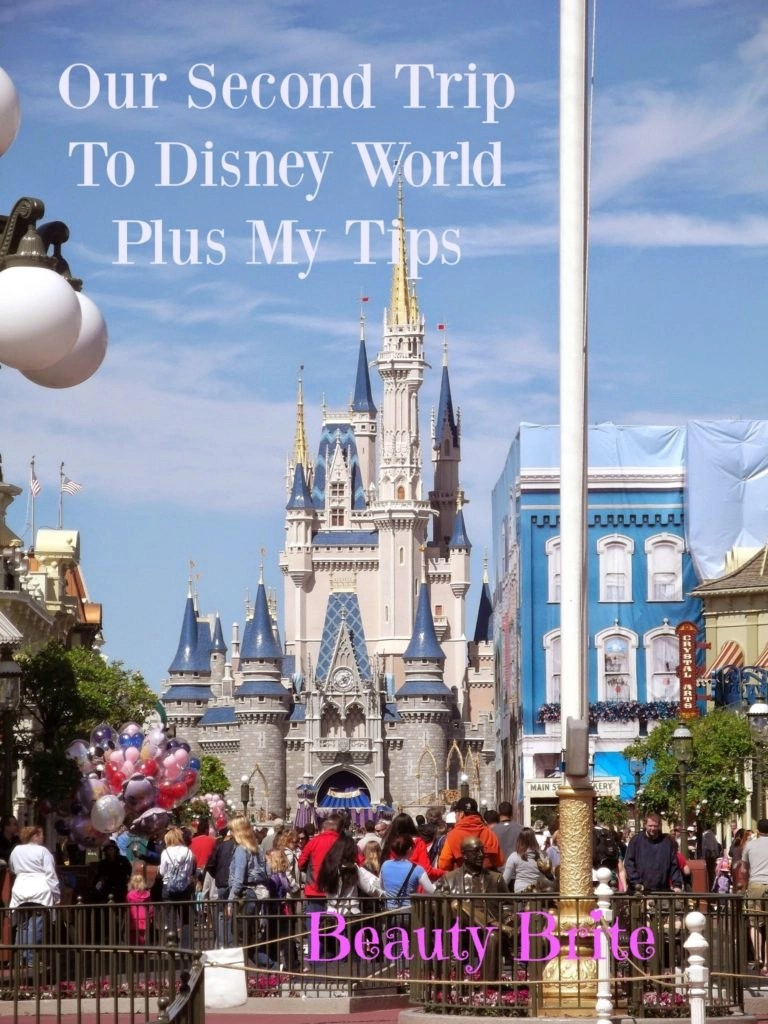 Our Second Trip To Disney World Plus My Tips
