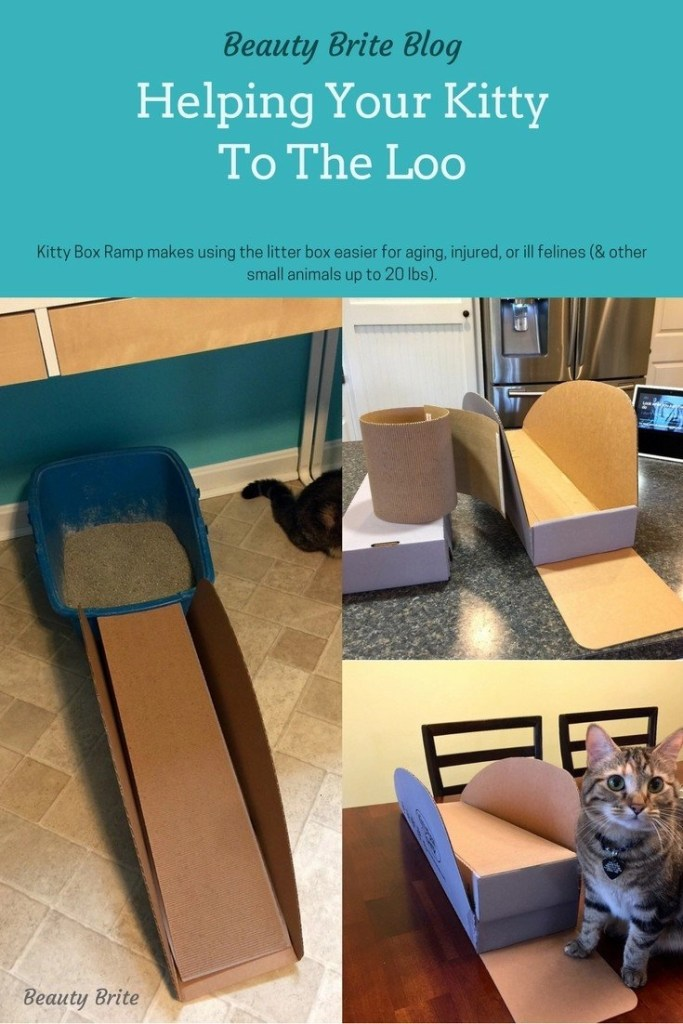 Helping Your Kitty To The Loo -- Kitty Box Ramp