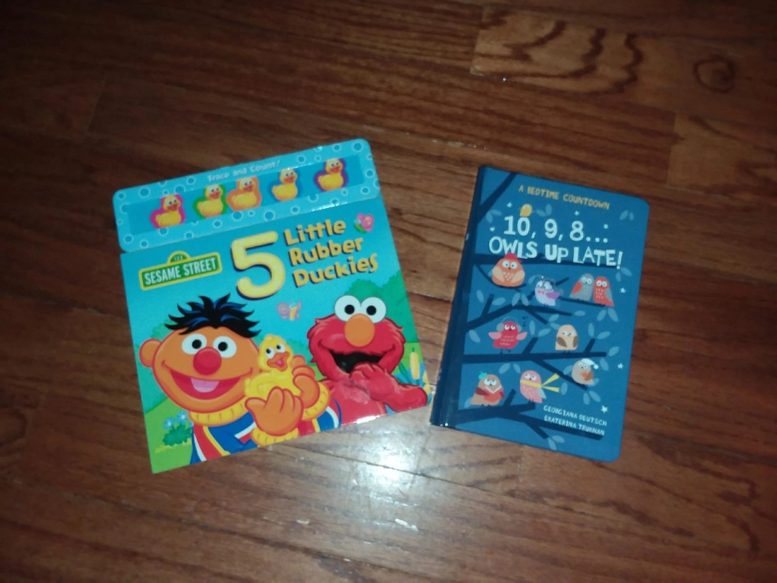 Sesame Street 5 Little Rubber Duckies and 10 9 8 Owls Up Late