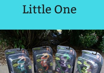 Dino Fun for Your Little One