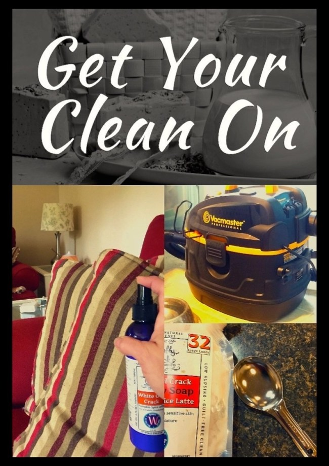 Get Your Clean On--Vacmaster Wet Dry Shop Vac-Shabby Chick Natural Products