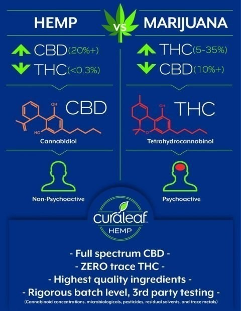Hemp-based CBD - Curaleaf Infographic