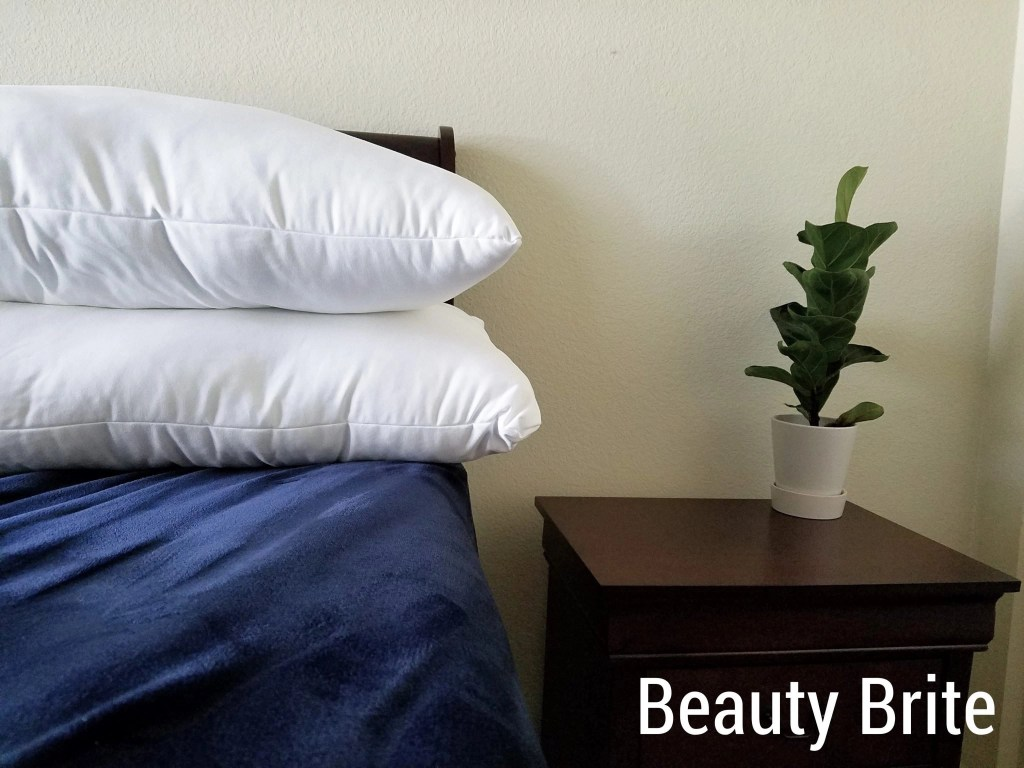 Classic Pillows next to night stand with plant
