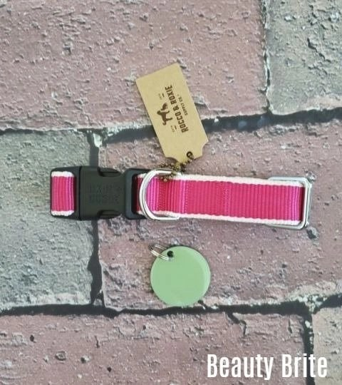 Pink Cream Collar in Small and Personalized Dog Tag in Sage