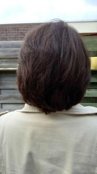 kort haar