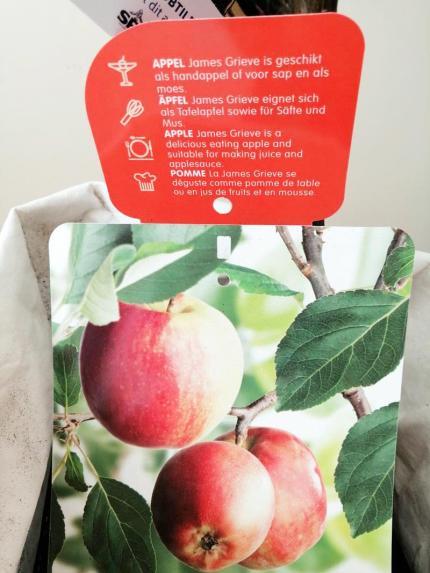james grieve appels