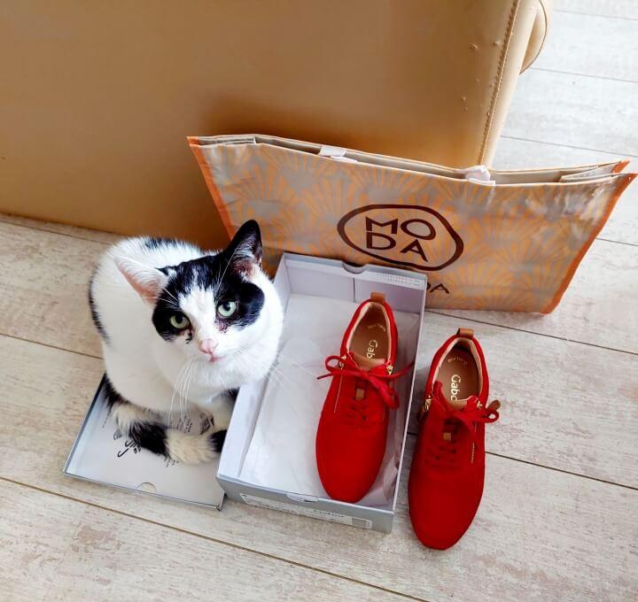 Lekker Wandelen op mijn Nieuwe Sneakers van Gabor! (En waarom is wandelen zo gezond?) 21 gabor Lekker Wandelen op mijn Nieuwe Sneakers van Gabor! (En waarom is wandelen zo gezond?)