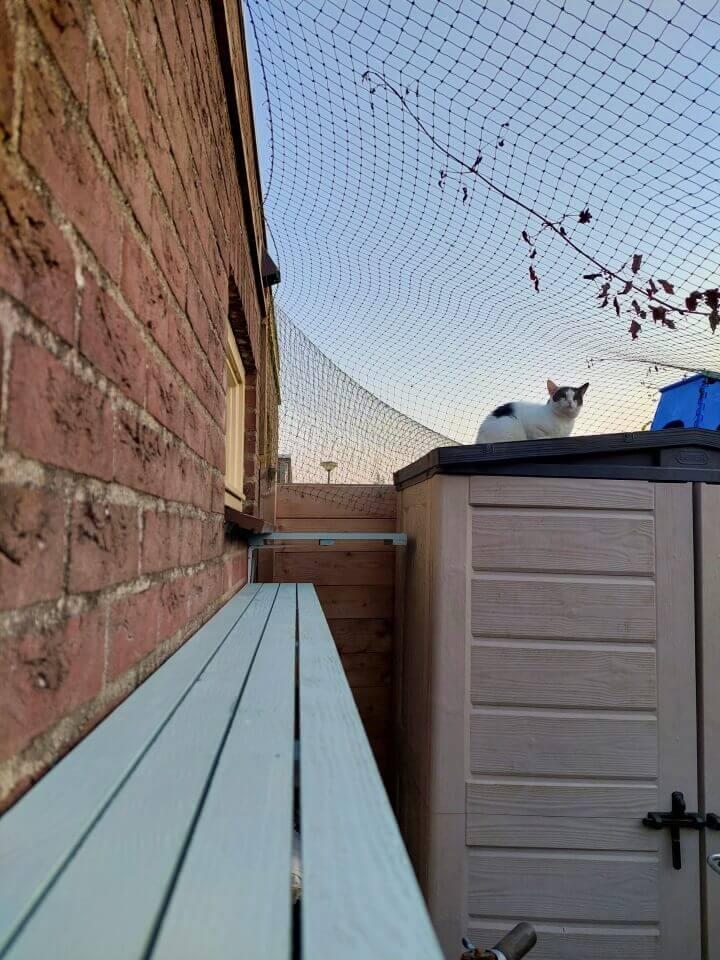KeeK op de WeeK 35- Een kattentrap voor Marie, Kies en Kapper... 13 kattentrap KeeK op de WeeK 35- Een kattentrap voor Marie, Kies en Kapper...