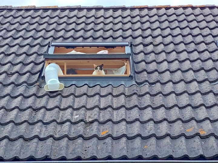Keek op de WeeK 36- Balkon op het Dak, Marie de Schildpad en Rats Kuch en Bonen... 13 balkon Keek op de WeeK 36- Balkon op het Dak, Marie de Schildpad en Rats Kuch en Bonen...