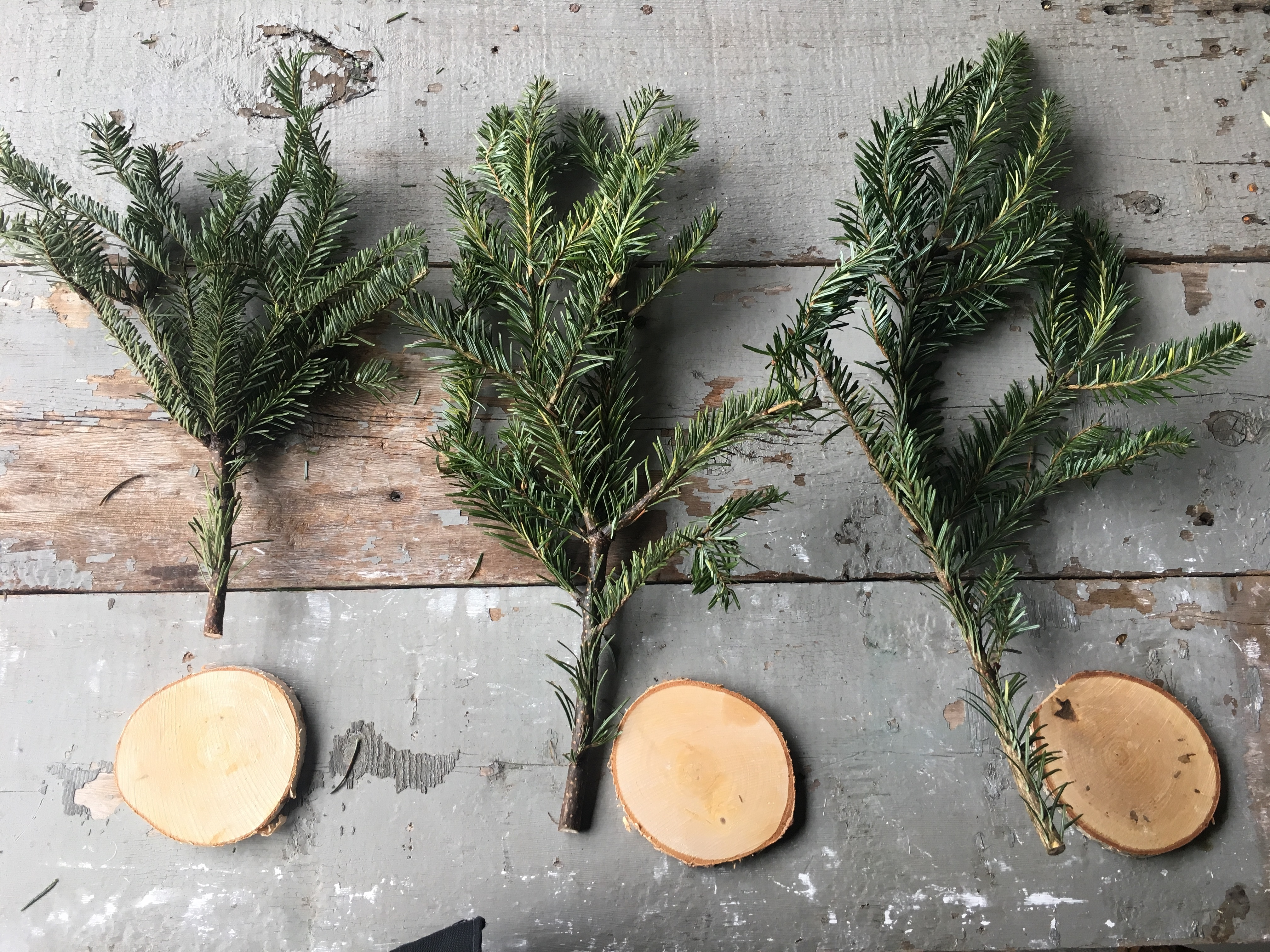 You won't believe how quick and easy it is to make these Christmas trees! I'm sharing the tutorial for not 1, but 3 Christmas tree DIYs!