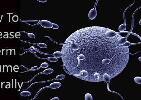 how to increase sperm count,how to increase sperm volume,how to increase sperm production,how to increase semen volume naturally,increase sperm count naturally,how to increase sperm motility,how to increase seman volume naturally,increase sperm count,how to improve sperm motility,sperm,increase sperm motility,sperm count,how to improve semens volume,foods that increase sperm count