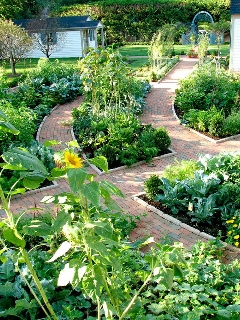 21 Top Ideas For Your Garden! Summer Is Coming ... on Backyard Layout id=52286