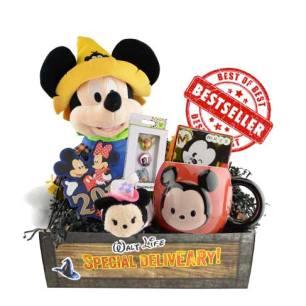 Walt Life subscription box for kids Official Disney subscription box - unboxing subscription box review | beautyisgf123.com