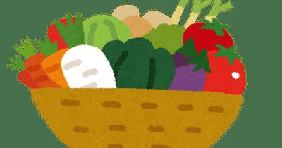 【朗報】堀江貴文さん、山盛りの生野菜を食べるwwwwwww