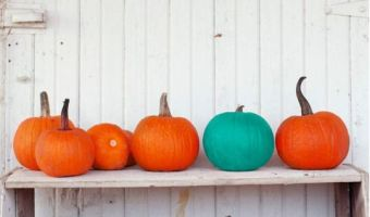 orange and teal pumpkins on a white rustic bench