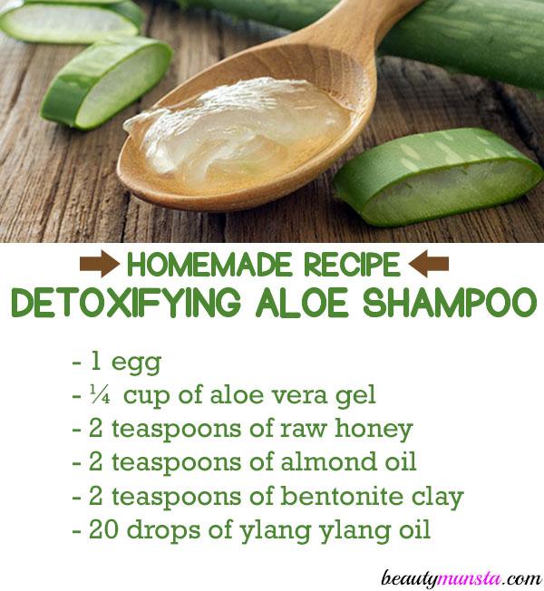 homemade aloe vera shampoo