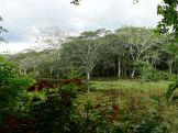 Amboro national parque (23)
