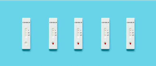 【夏休みセール実施中】簡単5分〜新型コロナウイルスIgM/IgG抗体検査キット キャンペーンのお知らせ