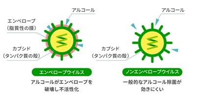 【次亜塩素酸ナトリウム レター】アルコール除菌では効きにくいウイルス・菌がある!?次亜塩素酸ナトリウム除菌との併用のススメ