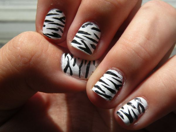 Zebra pattern 3D design