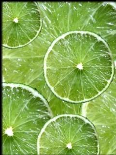 Majda Bekkali-green-lemon