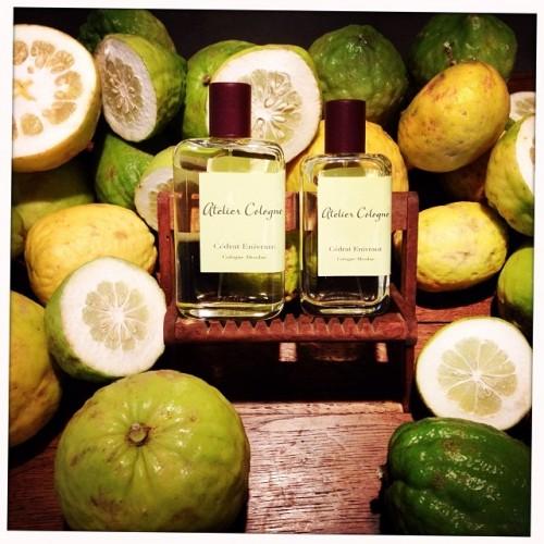Perfume-Questionnaire-Christophe-Cervasel-Atelier_Cologne-Cedrat-Enivrant