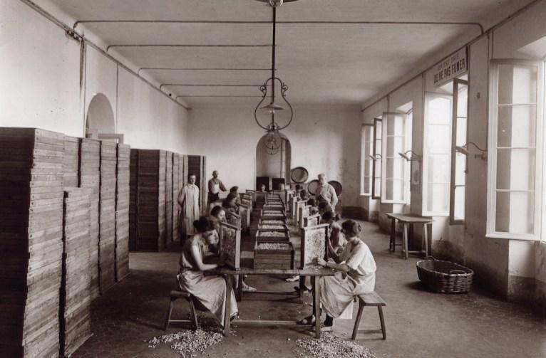 l'azienda nel 1922