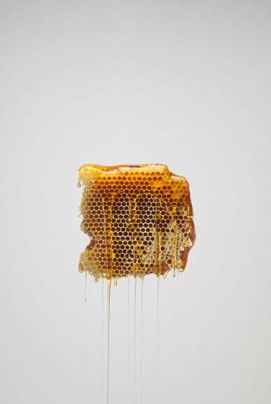 Perfume-Questionnaire-Marie-Hélène-Rogeon-miele